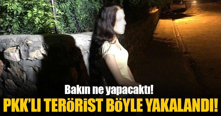 Mardin'de suikast için keşif yapan terörist yakalandı