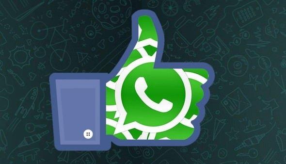 Whatsapp'a bomba bir özellik daha geliyor!