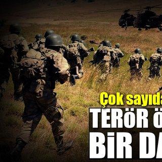 Siirt`te 6 PKK`lı terörist etkisiz hale getirildi