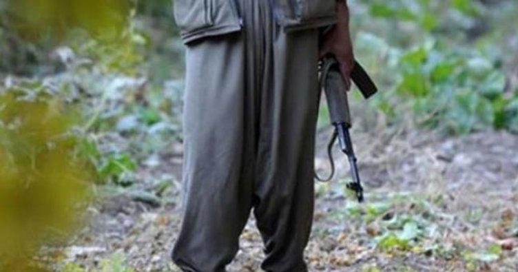 Çukurca'da aranan PKK'lı terörist yakalandı