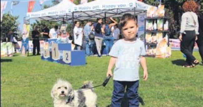 Beşiktaş'ta en güzel köpekler yarıştı