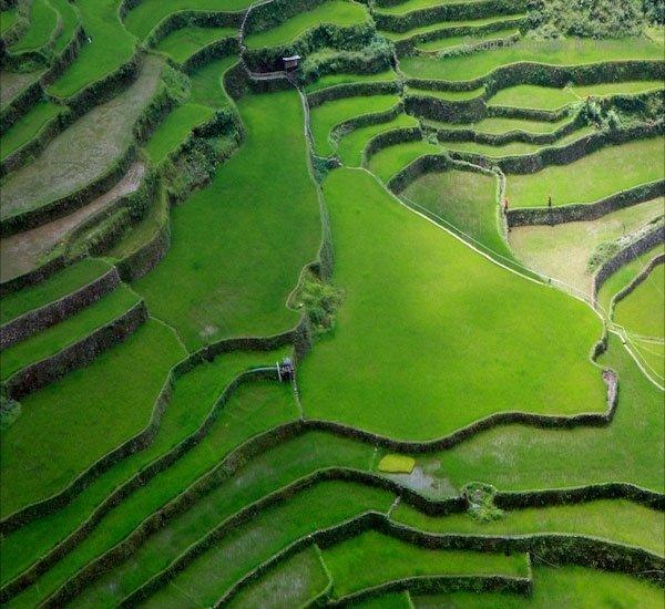 Dünyanın 8. harikası Banaue