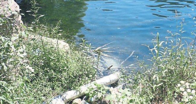 Alaköprü Barajı'na atık sular karışıyor