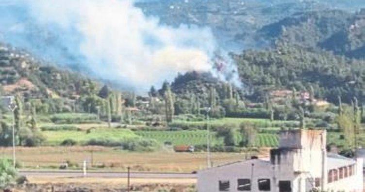 Salihli'de orman yangını korkuttu