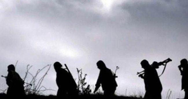 Şemdinli'den son dakika haberi: 2 terörist öldürüldü