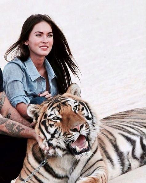 Megan Fox'un bebeğinin babası belli oldu