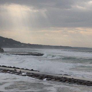 Karadenizli balıkçıların umudu Kestane Karası Fırtınası