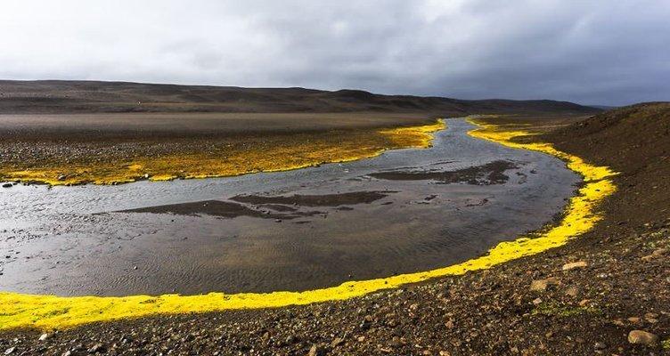 İzlanda'nın beyazı ve yeşili