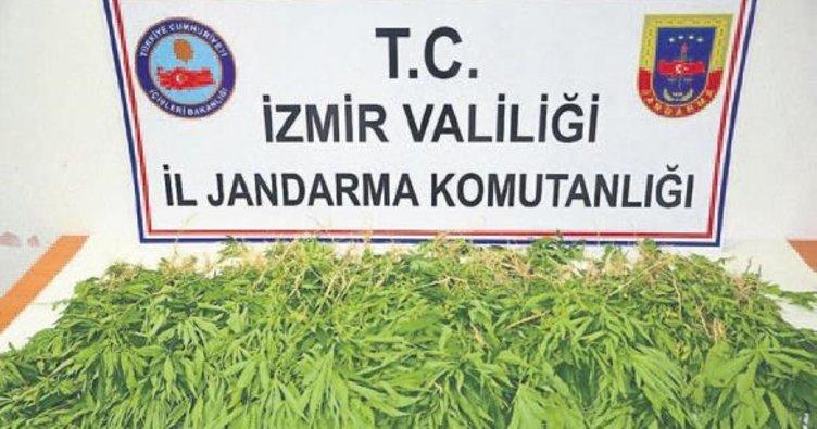 İzmir'de dev uyuşturucu operasyonu