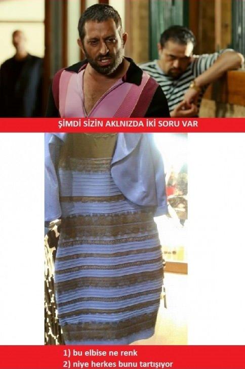 Bu elbise ne renk? capsleri