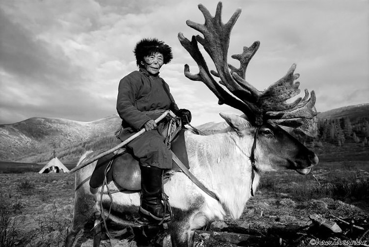 Moğolistan'dan harika kareler