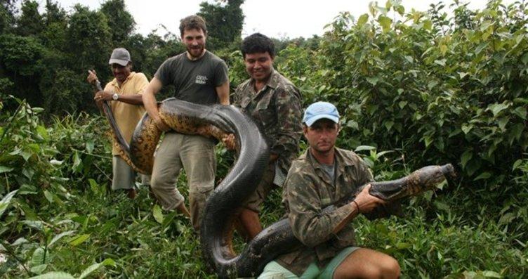 100 kiloluk anakonda