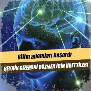 Beynin gizemini çözmek için ürettiler!