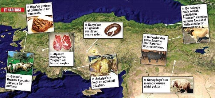 Türkiye'nin et haritası