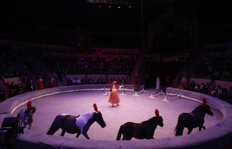 Ciniselli Sirki Rusya'da açıldı