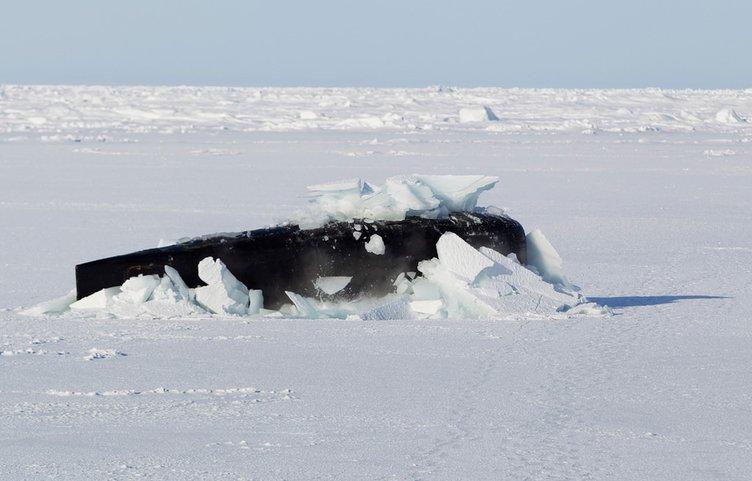 Buzların arasından çıktı!
