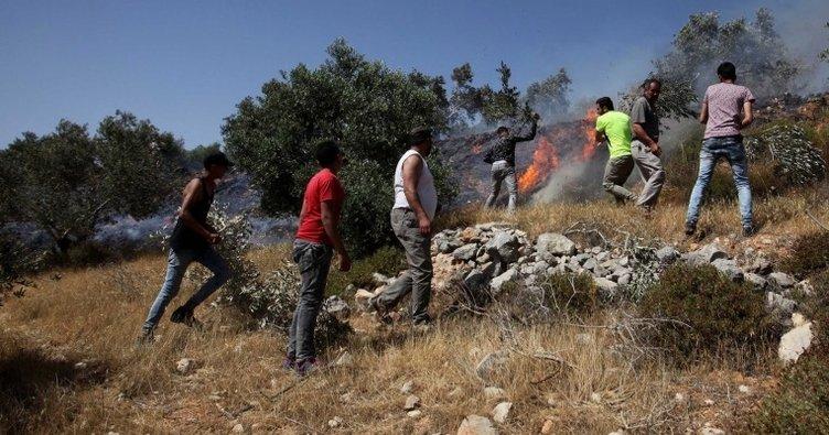 Yahudi işgalciler tarım arazilerini ateşe verdi!