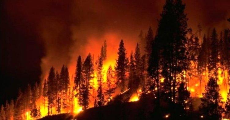 Batı Akdeniz için orman yangını uyarısı!