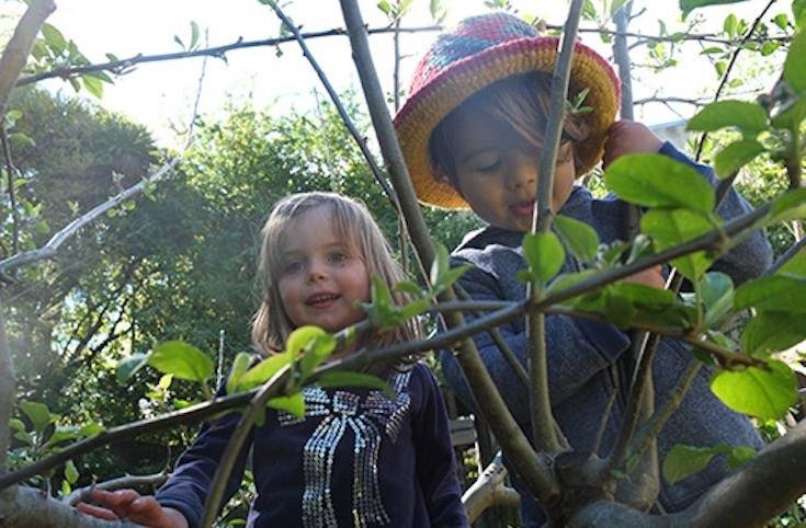 Orman okullarından o kareler