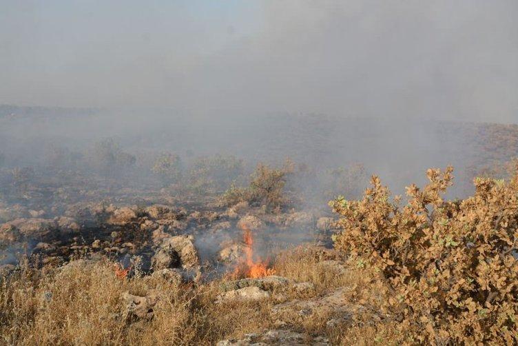 Doğu ve Güneydoğu'da yangın