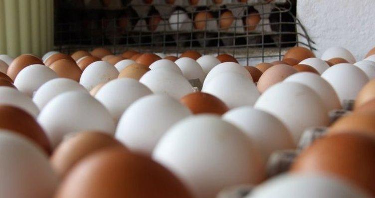 Yumurta boy uzatıyor!