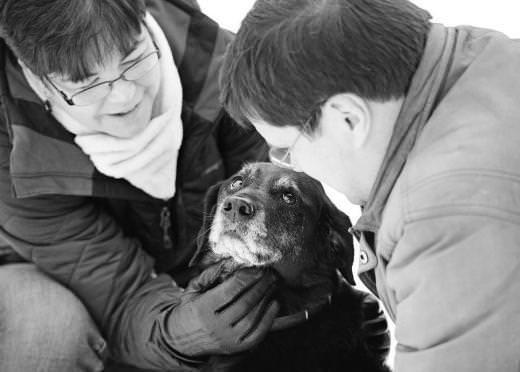 Ölmek üzere olan evcil hayvanlarla sahiplerinin son anları