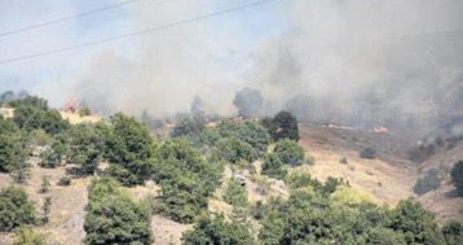Kızılcahamam'daki yangın söndürüldü