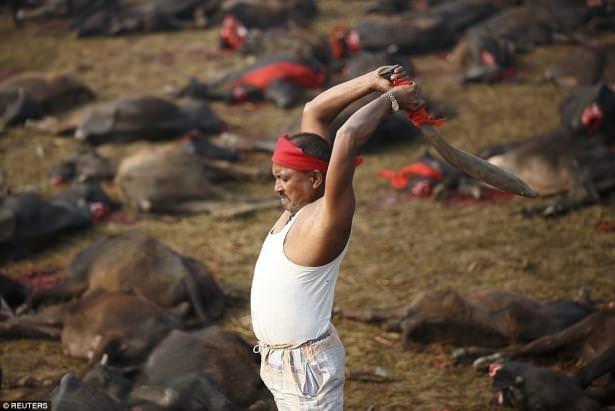 Nepal'de festival dehşeti