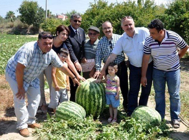 Türkiye'nin en büyük karpuzu