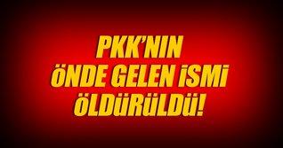 PKK'nın Tunceli'deki 2 numarası öldürüldü