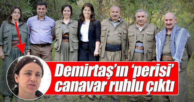 Demirtaş'ın 'perisi' canavar ruhlu çıktı