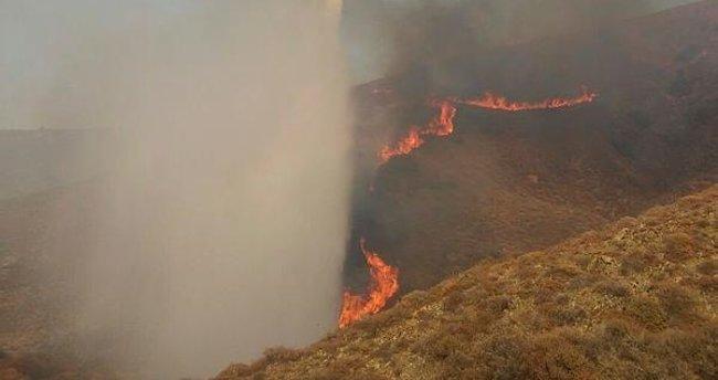 Paşalimanı Adası'nda yangın