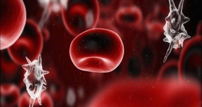 Ölümcül 'sepsis'e küresel ortak eylem çağrısı