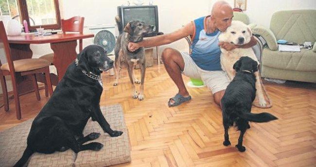 Rusya'da iyileşen Çiko hayvanlara umut oldu