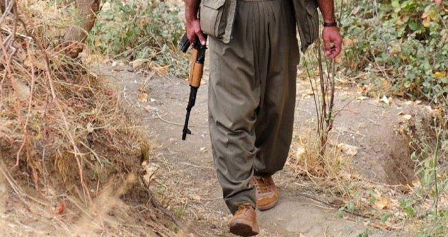 Çukurca'da 2 PKK'lı terörist teslim oldu