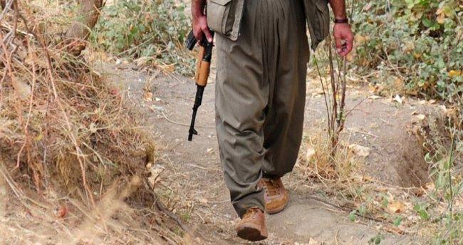 Tunceli'de 5 PKK'lının cesedi bulundu
