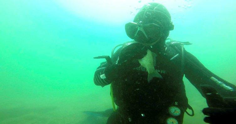Gölde temizlik yapan dalgıç, ağa takılan balığı öpüp bıraktı