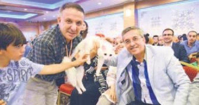 Ankara Kedisi Güzellik Yarışması tescillendi
