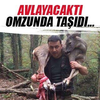 Yaralı karacayı 3 kilometre omzunda taşıdı