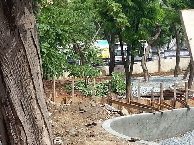Bakırköy'de ağaçlar kesildi
