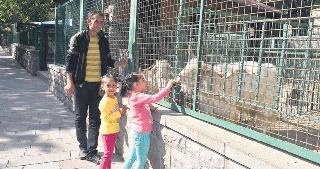 Evcil Hayvanlar Parkı ziyaretçilerini ağırlıyor