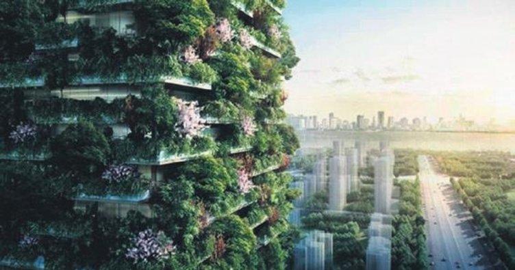 Çin, ilk orman kenti inşa ediyor