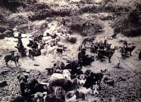İstanbul'un ilk sürgünleri