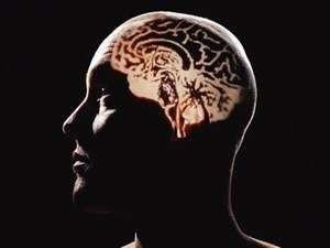 Hafızayı kuvvetlendiren besinler