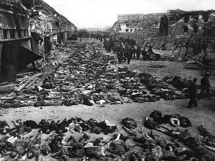 Almanya'nın Mabimya'daki katliamlarına karşı yasa teklifi