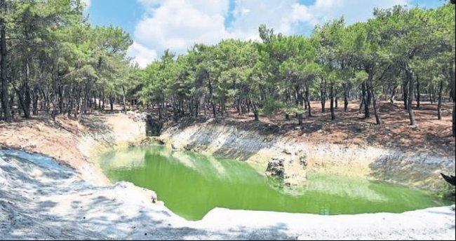 Park Orman açılıyor