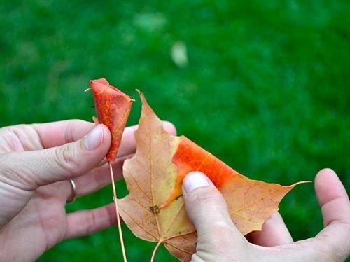 Sonbahar yapraklarından buket yapımı
