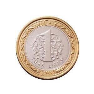 1 TL'nin diğer ülke paraları karşısındaki değeri