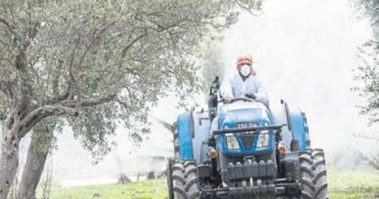 Zeytin üreticisine bitki ilacı dağıtıldı