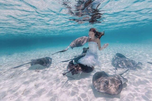 Su altındaki 'harikalar diyarı'
